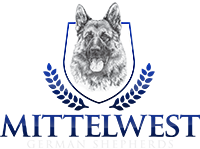 Mittelwest German Shepherds Logo