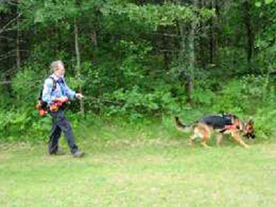 Mittelwest German Shepherds At Search-Rescue & Cadaver Recovery 3