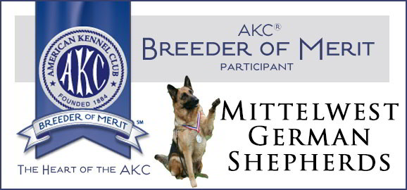 AKC Breeder Of Merit Mittelwest German Shepherds