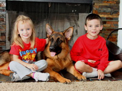 Client Testimonials Of Mittelwest German Shepherds Cindy Fink 1