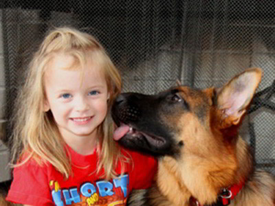 Client Testimonials Of Mittelwest German Shepherds Cindy Fink 2