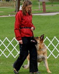 Client Testimonials Of Mittelwest German Shepherds Jill Haunold