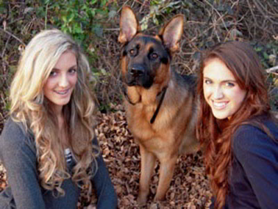 Client Testimonials Of Mittelwest German Shepherds Maximus