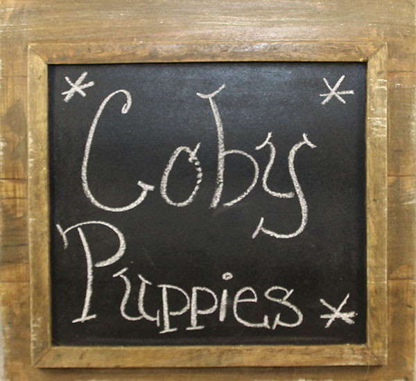 Coby's Puppies Sign