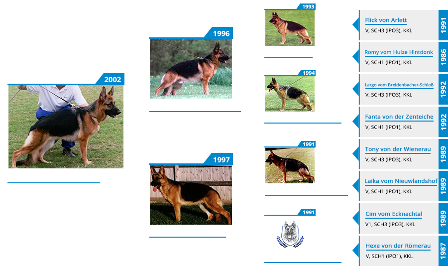 Pedigree For - VA Fonzi vom Mittelwest - Pedigree