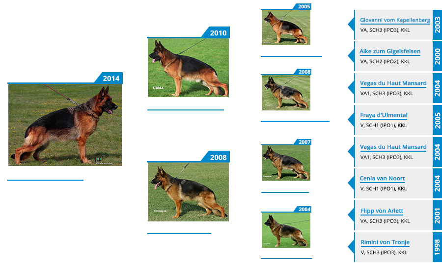 Breeding Females - Estrella von Arlett - Pedigree