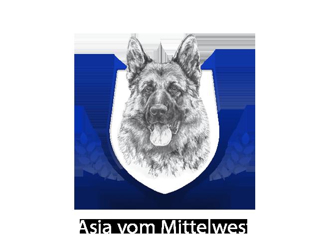 Asia vom Mittelwest Placeholder